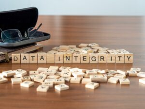 data integrity the word or concept represented by wooden letter tiles